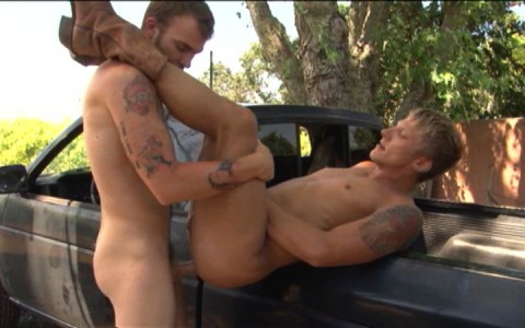 l7793-mistermale-gay-sex-porn-hardcore-videos-hunks-studs-muscle-men-gods-butch-rough-tough-beefcake-manly-viril-male-otters-bears-hairy-wolves-naked-sword-wilde-road-018
