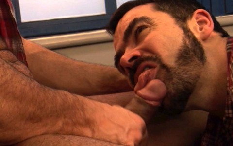 l7777-mistermale-gay-sex-porn-hardcore-videos-hunks-studs-muscle-men-gods-butch-rough-tough-beefcake-manly-viril-male-otters-bears-hairy-wolves-alphamales-checkmate-013