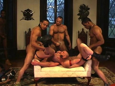 pitbull the show universblack partouze gay pic22