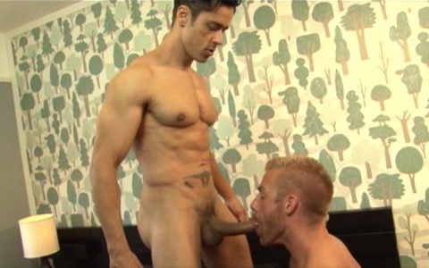 l7789-mistermale-gay-sex-porn-male-butch-hairy-hunks-scruff-muscle-men-studs-naked-sword-hooker-stories-006