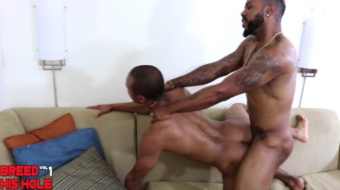 L15082 MISTERMALE gay sex porn hardcore fuck videos butch hairy macho muscle men xxl cocks 012