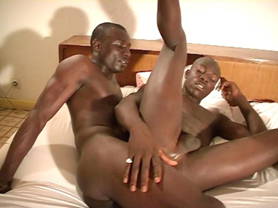 Black Beauts