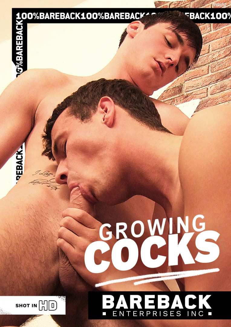 BEI024 Growing Cocks   Cover   copie