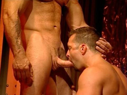 muscled-hairy-bear-04