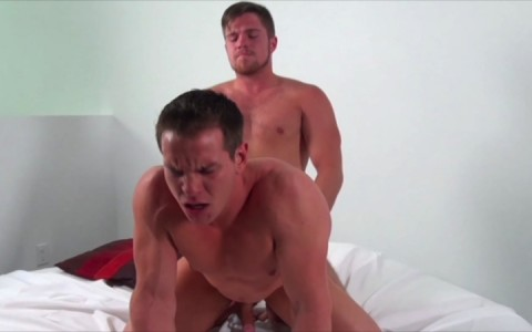 l7886-mistermale-gay-sex-porn-hardcore-videos-hunks-studs-muscle-men-gods-butch-rough-tough-beefcake-manly-viril-male-otters-bears-hairy-wolves-dominic-ford-young-furry-011