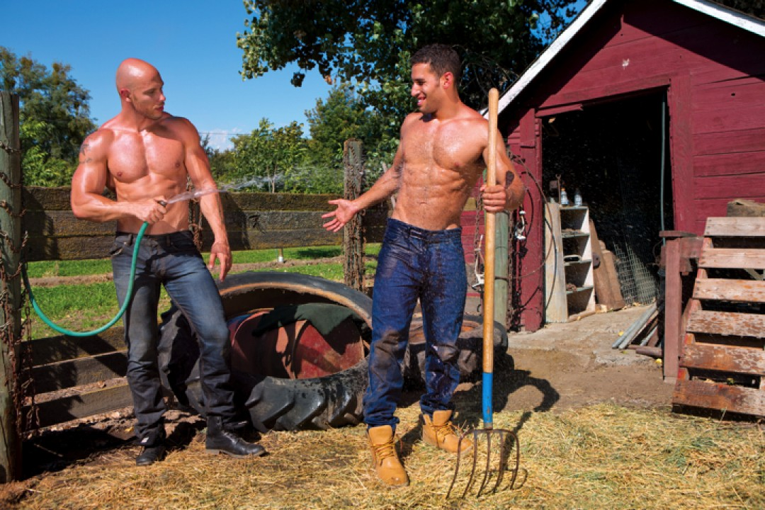 Farming with the studs