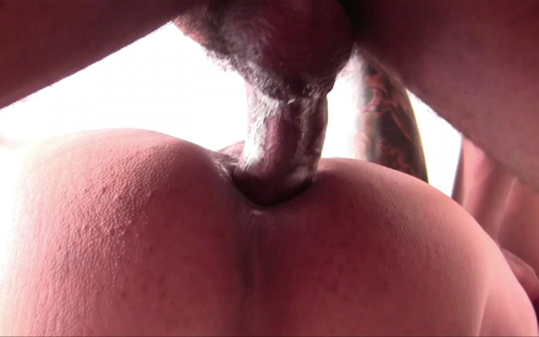 Hung stallion for power-bottom