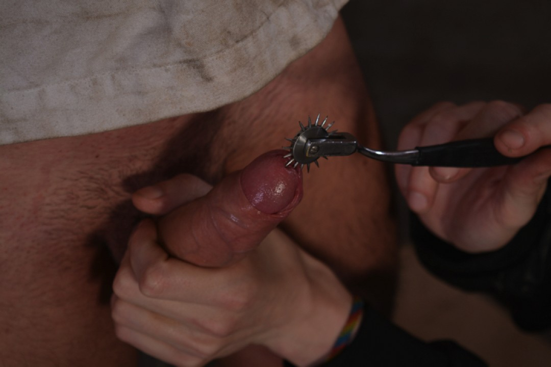 Made To Fuck A Tight Hole
