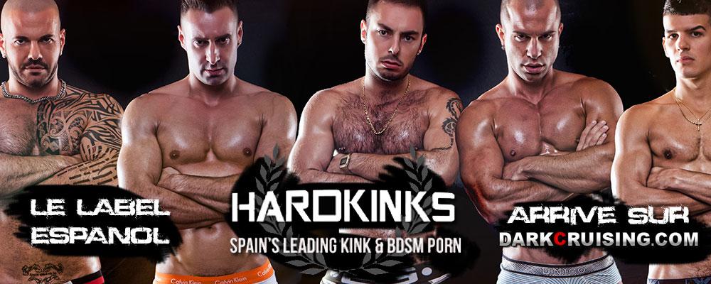 Banniere Hardkinks 1-6