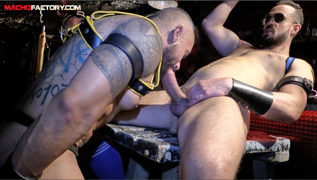 THE HUNG AND THE SLUT1