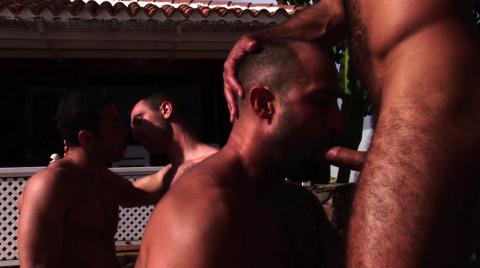 L19536 ALPHAMALES gay sex porn hardcore fuck videos butch macho hairy hunks xxl cocks muscle studs 17