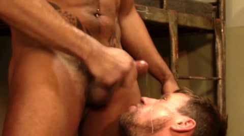L15818 MISTERMALE gay sex porn hardcore fuck videos hunks studs butch hung scruff macho 08