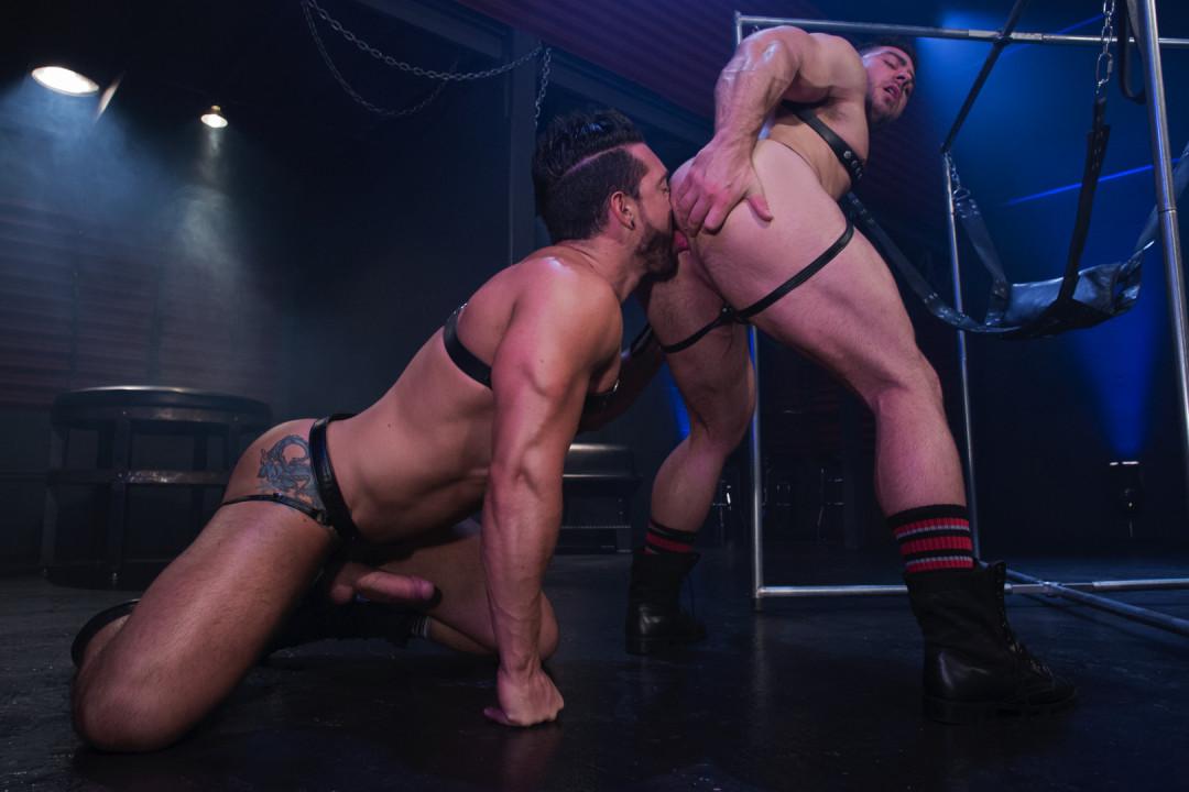 Hot gay pig to fuck hard