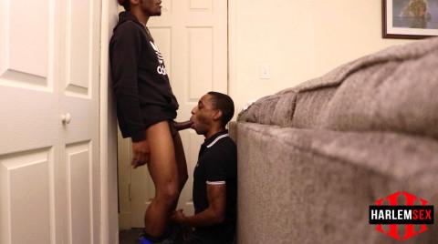 L18719 HARLEM gay sex porn hardcore fuck videos black papi thugz gangsta xxl cock bbk blowjob 04