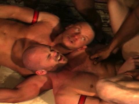 pitbull the show universblack partouze gay pic23
