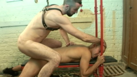 L5455 DARKCRUISING gay sex bulldog 18