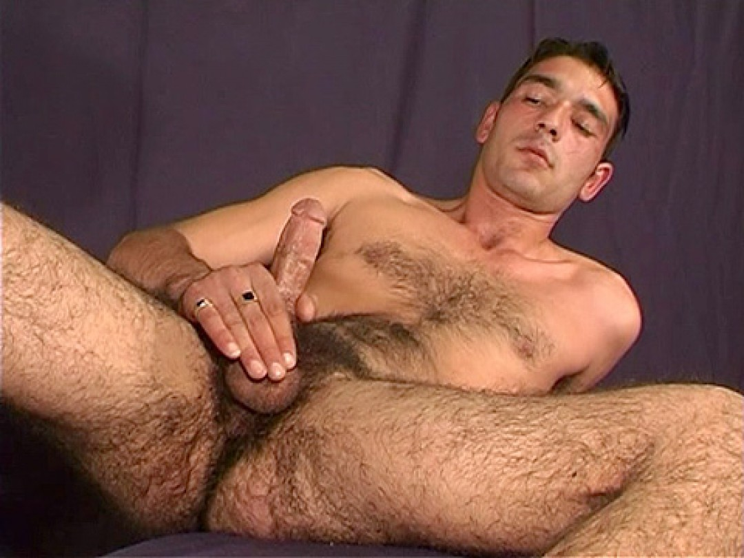 SUPERB MATURE STUD CALLED GRINGO