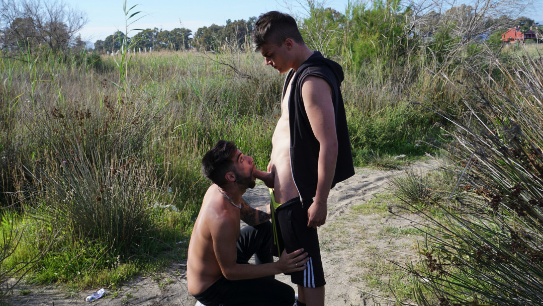 Hot bearded gay dude looking for hard sex into the fields