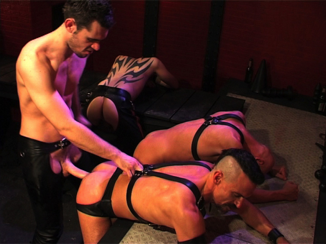 3 gay slaves submitted by Peto Coast