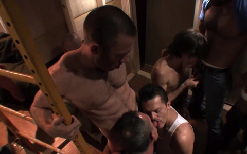 l16095-mistermale-gay-sex-porn-hardcore-fuck-videos-butch-manly-beefy-hairy-studs-hunks-09