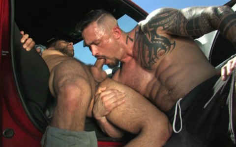 l12864-mistermale-gay-sex-porn-hardcore-videos-butch-hunks-muscles-studs-beefcakes-males-scruff-hairy-tatoo-003