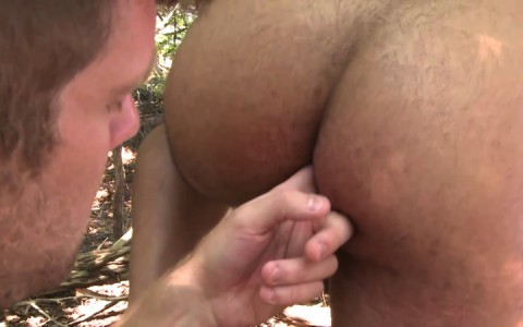 L16302 MISTERMALE gay sex porn hardcore fuck videos males beefy hairy studs hunks 09