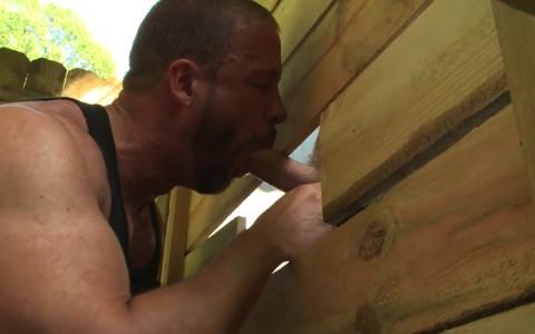 L16298 MISTERMALE gay sex porn hardcore fuck videos males hunks studs hairy beefy men 05