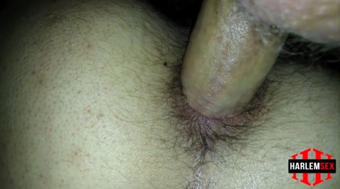 L18778 HARLEMSEX gay sex porn hardcore fuck videos bj blowjob handjob wank deepthroat mouthfuck cumload xxl bro cock spunk bbk bareback 15