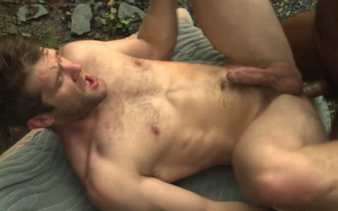 L16285 MISTERMALE gay sex porn hardcore fuck videos males beefy hairy studs hunks 08