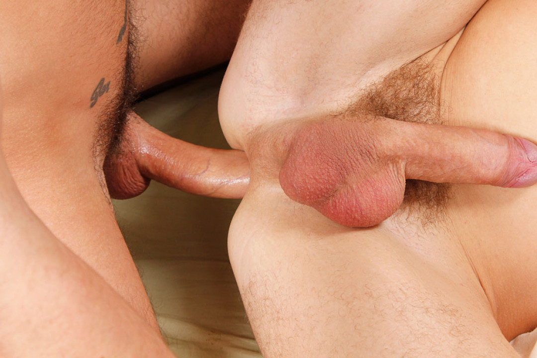 Waking up in front of your gay cock / Tattooed Trouble