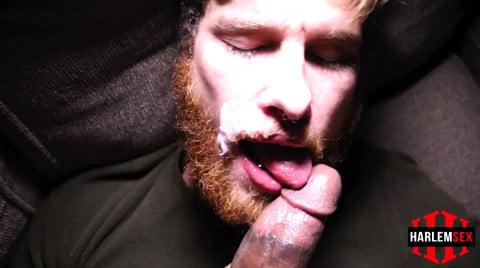 L18784 HARLEMSEX gay sex porn hardcore fuck videos bj blowjob handjob wank deepthroat mouthfuck cumload xxl bro cock spunk bbk bareback 16