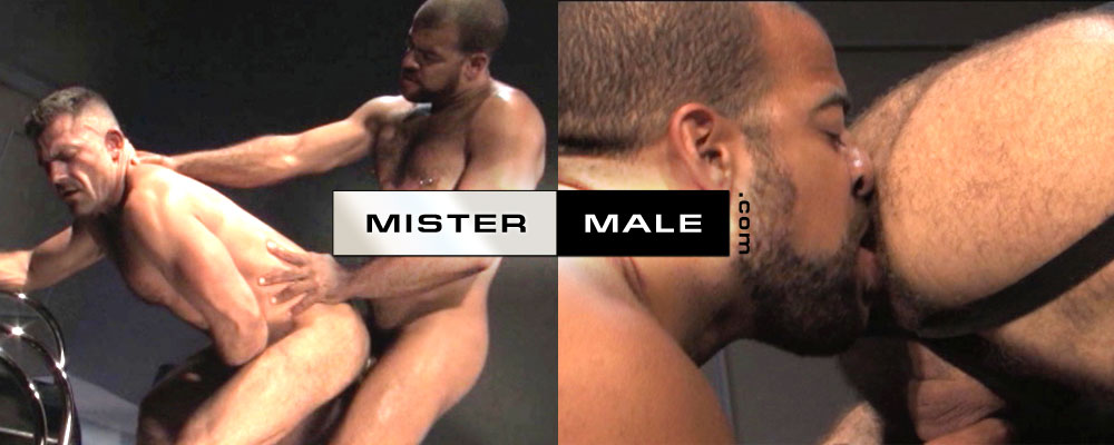 mister-male-17103-la-sueur-du-metisse
