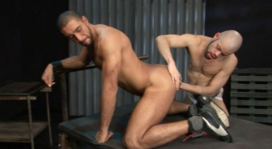 The best of Latino male