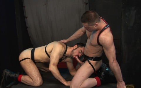 l7104-cazzo-gay-sex-porn-hardcore-made-in-germany-berlin-cazzo-hard-play-003