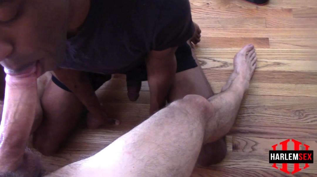 L18773 HARLEMSEX gay sex porn hardcore fuck videos twinks bbk bareback big cock young cum cumshot cumload creampie breed spunk 17