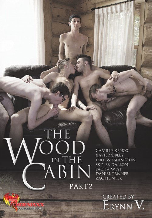 The Wood In The Cabin 02