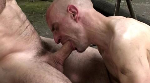 L01715 CAZZO gay sex porn hardcore fuck videos berlin bln geil xxl cocks cum 13