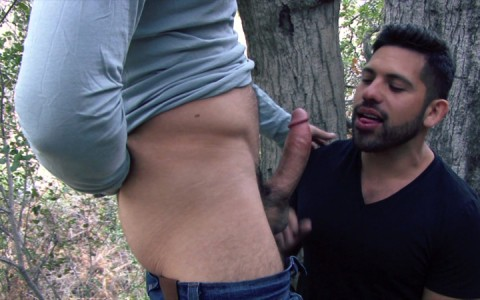 l9218-mistermale-gay-sex-porn-hardcore-videos-males-hunks-hairy-muscle-studs-scruff-macho-butch-rough-men-rascal-sentenced-007