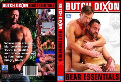 bear-essentials-cover