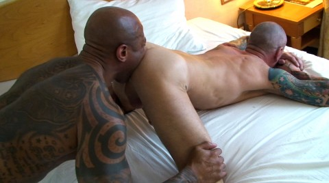 L17971 MISTERMALE gay sex porn hardcore fuck videos bareback rough macho 04