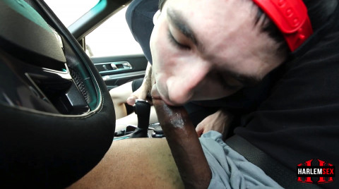 L18868 HARLEMSEX gay sex porn harcore fuck videos black blowjob deepthroat mouthfuck bj facecum hung young macho lads xxl cocks 06