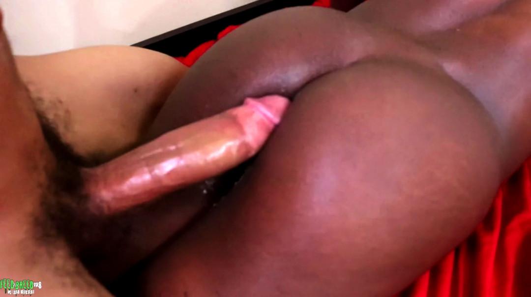 L20003 UNIVERSBLACK gay sex porn hardcore fuck videos blacks black thugz gangsta big cock BBC BBD 16