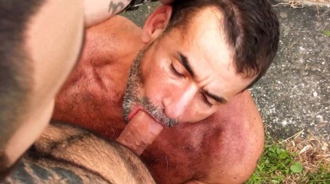 L16057 MISTERMALE gay sex porn hardcore fuck videos butch male muscle xxl cocks cum spunk 007