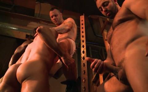 L16320 MISTERMALE gay sex porn hardcore fuck videos hunks hairy scruff muscle studs butch 03