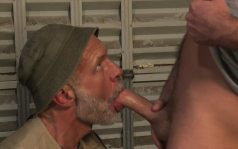 L16114 MISTERMALE gay sex porn hardcore fuck videos males beefy hairy studs hunks 08