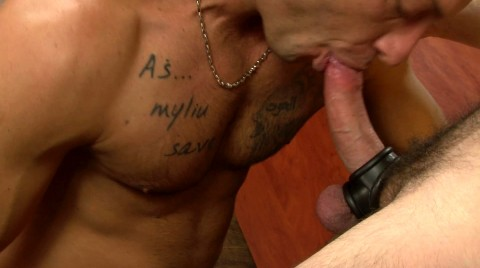 L15789 MISTERMALE gay sex porn hardcore fuck videos macho hairy hunks muscle 09