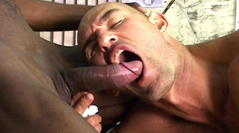 L02879 CAZZO gay sex porn hardcore fuck videos bln berlin geil xxl cocks cum bdsm fetish men 29