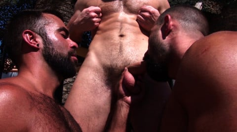 L19536 ALPHAMALES gay sex porn hardcore fuck videos butch macho hairy hunks xxl cocks muscle studs 08