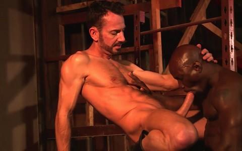 L16319 MISTERMALE gay sex porn hardcore fuck videos butch hunks muscle studs 20