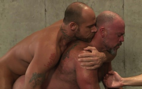 L16137 MISTERMALE gay sex porn hardcore fuck videos males beefy hairy studs hunks 10